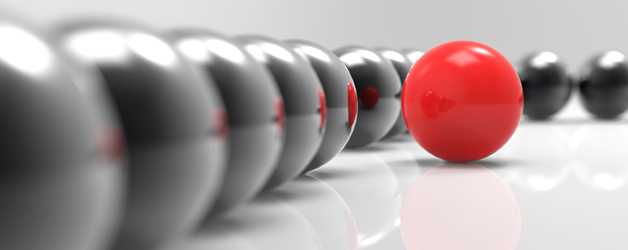 Investing in Your Core: Making Informed Strategic Bets by Refocusing on Business Fundamentals