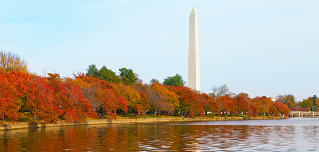 Washington DC Autumn scene